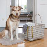 Overbeck-and-Friends-Markttasche-Cats-und-Dogs-k_2.jpg