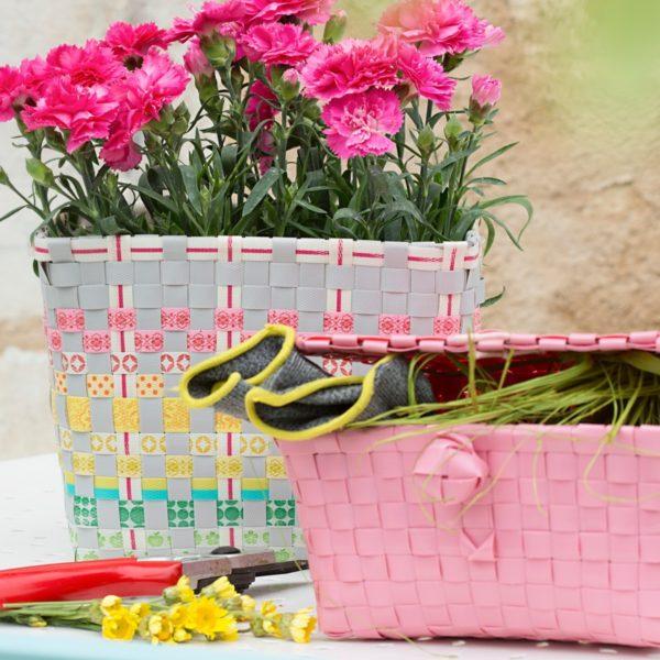 Sunny-und-pastell-pink.jpg