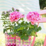 Overbeck-and-Friends-2er-Set-Blumenkoerbchen-Ida-15500151_3.jpg